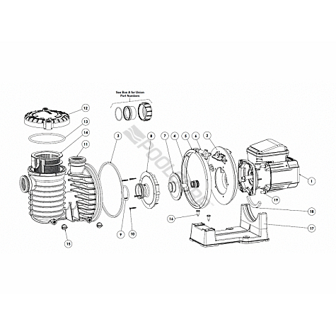 2 sd motor wiring diagram with Gas Pool Heater Wiring Diagram on Telephone Wiring Diagram Phone Line moreover Engine Dimensions together with Westinghouse Electric Motor Wiring Diagram furthermore Defrost Heater Wiring Diagram likewise Eaton Electrical Diagram.